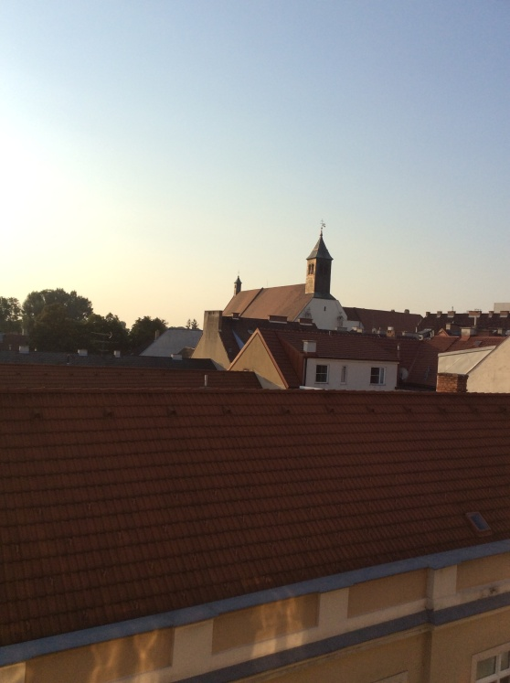 The rooftops in the evening.