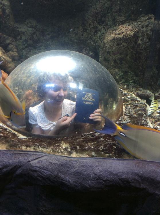 Underwater Investigators