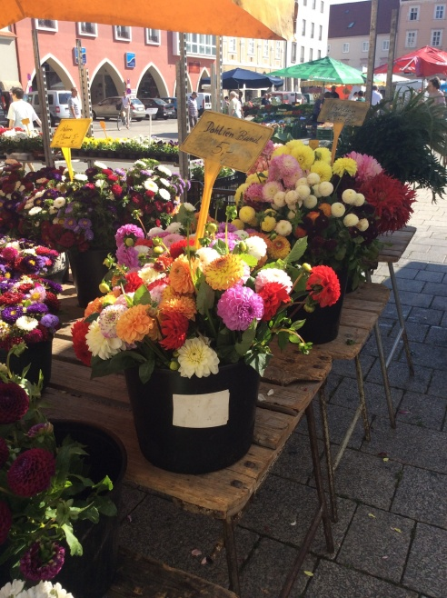 Flower Market on the Hauptlatz outside our door.